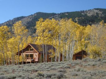 Star log timber frame post & beam hybrid Centennial Wyoming custom handcrafted home builder (1) - Deerwood Log Homes - Custom Built Homes and Cabins - Laramie, Wyoming and The Centennial Valley - deer-wood.com - (307) 742-6554