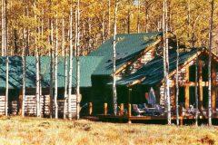 Bloom log timber frame post & beam hybrid Centennial Wyoming custom handcrafted home builder (5) - Deerwood Log Homes - Custom Built Homes and Cabins - Laramie, Wyoming and The Centennial Valley - deer-wood.com - (307) 742-6554
